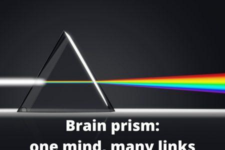 Brain prism: one mind, many links