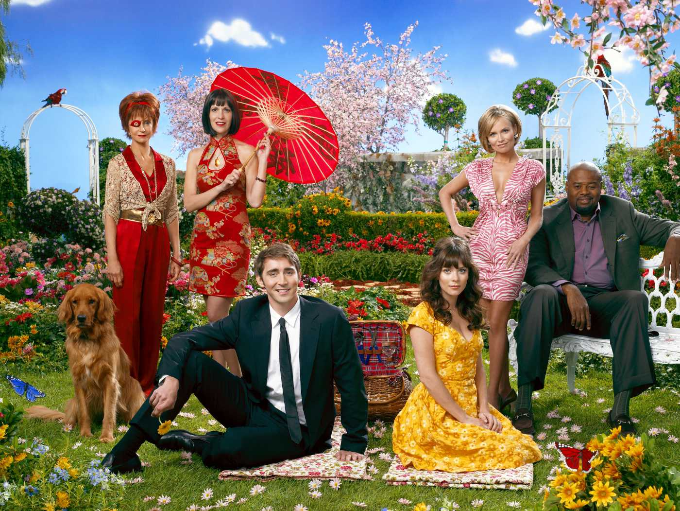 Read more about the article TV: Pushing Daisies
