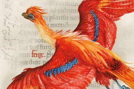 Exhibition – Harry Potter: A History Of Magic
